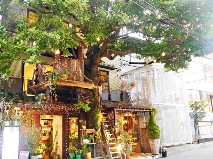 Les Grands Arbres樹屋