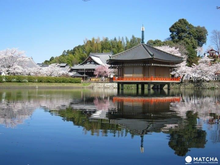 『奈良』祭祀日本最大騎士像的「安倍文殊院」