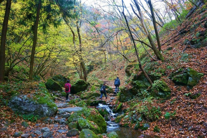 Mount Mitake In Tokyo - Explore Scenic Spots And Spiritual Traditions | STEP INTO GREATER TOKYO ...