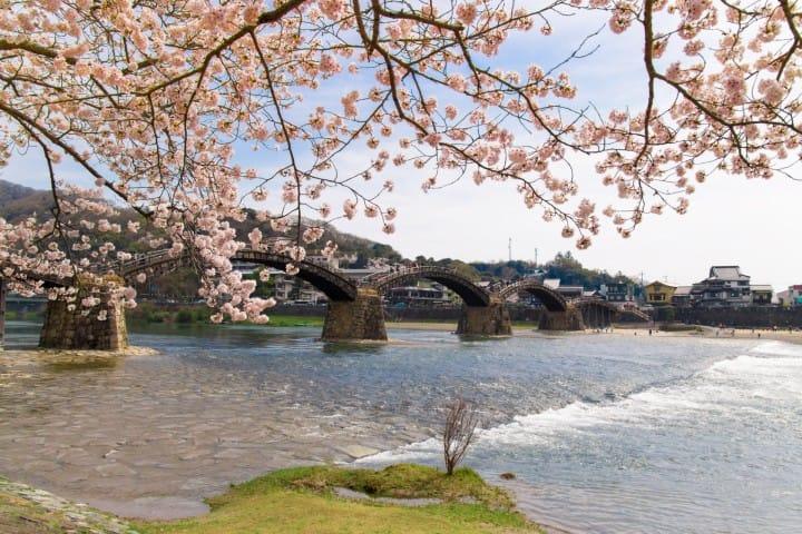 山口_錦帯橋2