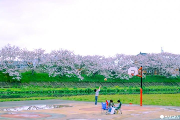 山口_観月河川公園3