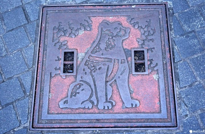 5 Places Related To Hachiko - Follow The Pawsteps Of The Famous Dog!