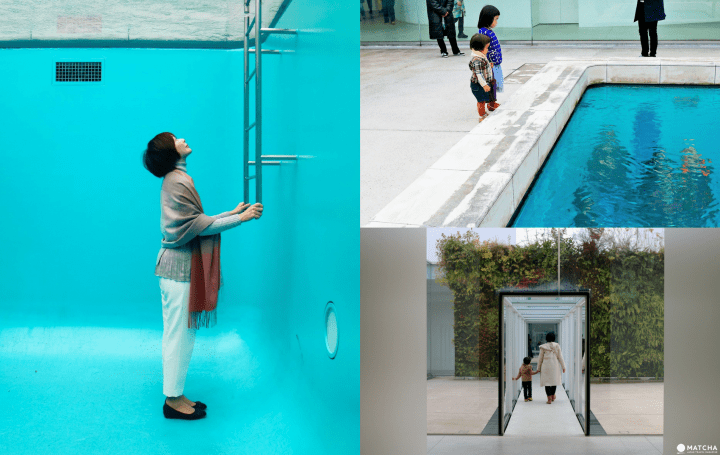 Captivating Art! The 21st Century Museum Of Contemporary Art, Kanazawa