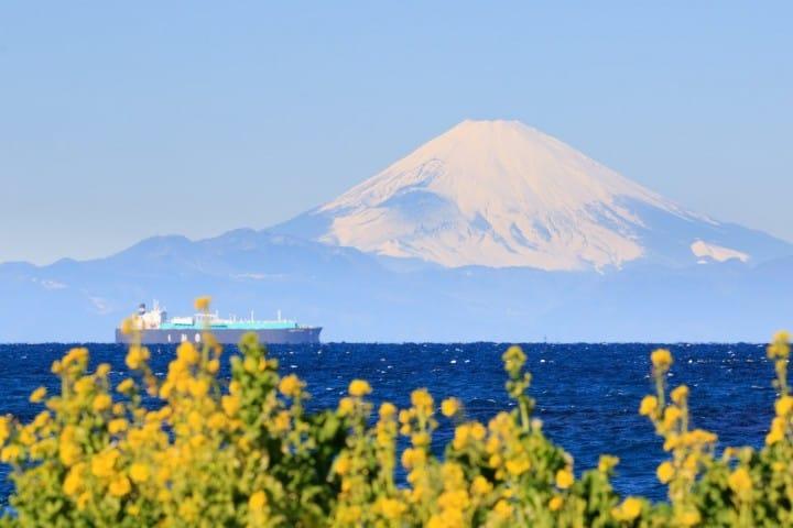 獨享超大富士山!富士絕景口袋名單,海與花的城市「千葉館山」