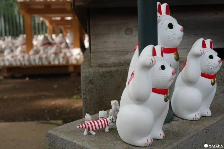 猫奴们路过东京,可别错过这七间猫咪神社&寺庙!