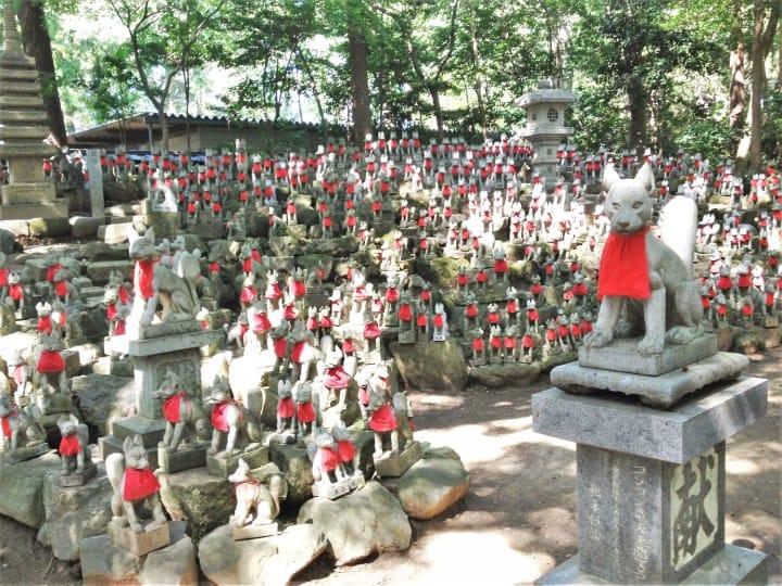 Các loài động vật linh thiêng như cáo, bò, khỉ,...có thể thấy tại các ngôi chùa, đền tại Nhật!