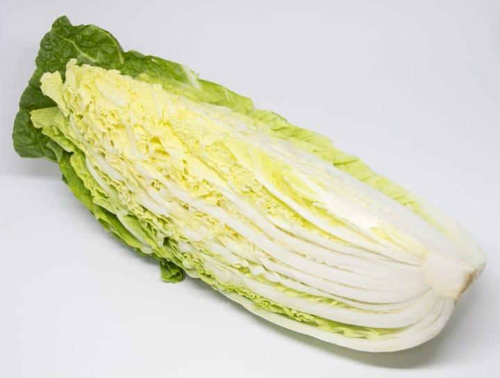 山東大白菜