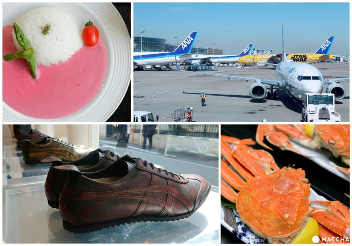 Reasonable Flights - Don't Miss Out On 7 Must Try Things In Tottori!