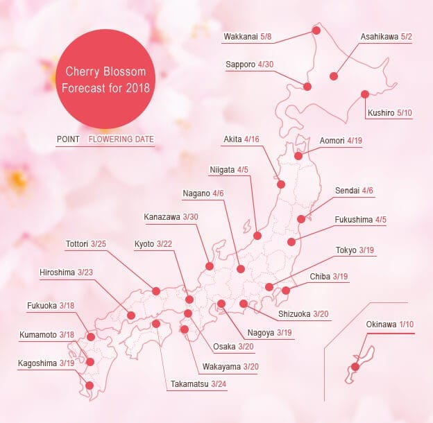Japan's Cherry Blossoms In 2018 - Forecast And Best Spots!