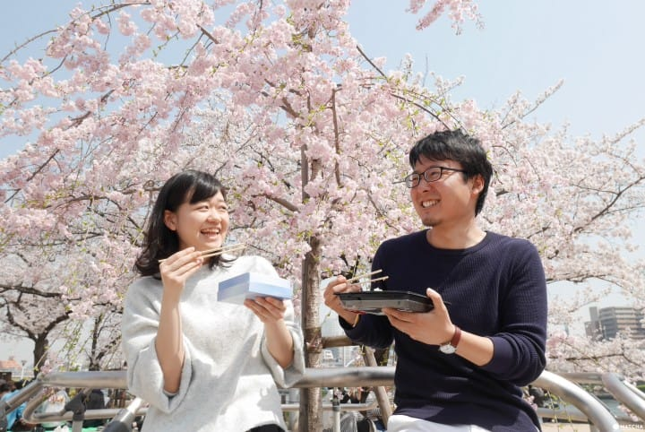 Guide To Packing Hanami Picnic Essentials: Picnic Under Cherry Blossoms