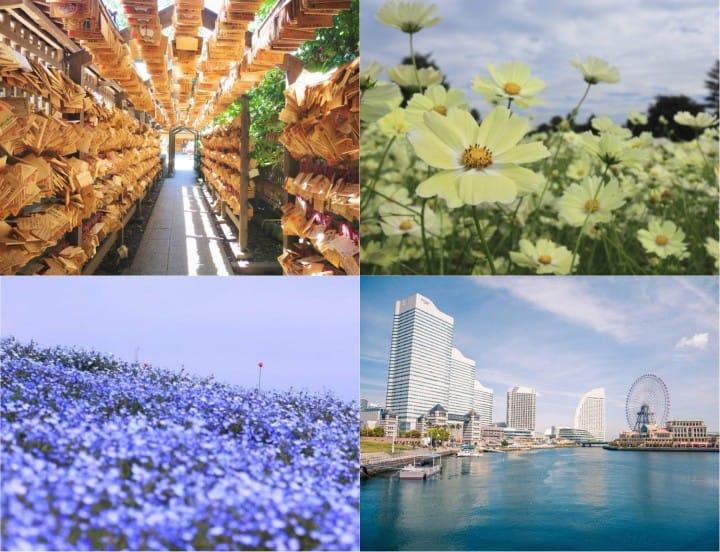 6 Spot Wisata Tokyo dan Sekitarnya yang Worth It Dikunjungi Saat Golden Week!