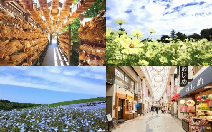Enjoy Golden Week! 7 Places To Visit In And Around Tokyo