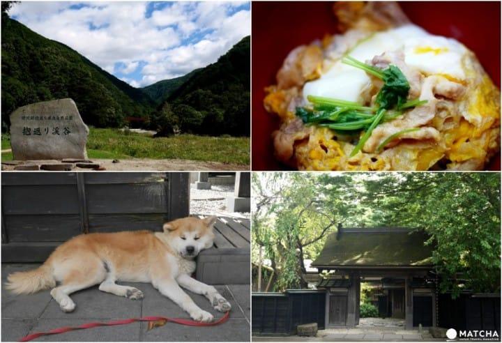 【秋田角館】陸奧小京都的武家屋敷、絕景、美食一日散策