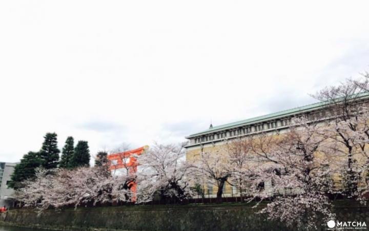 【京都】下雨不愁!梅雨季的左京岡崎好去處