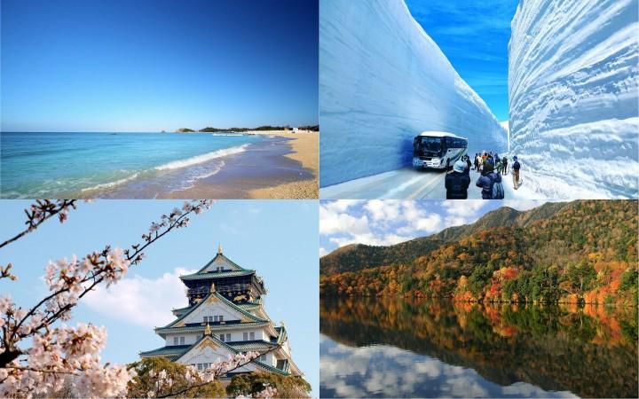 成田机场出发去日本各地!就看搜索廉价航空或巴士操作简单的网站