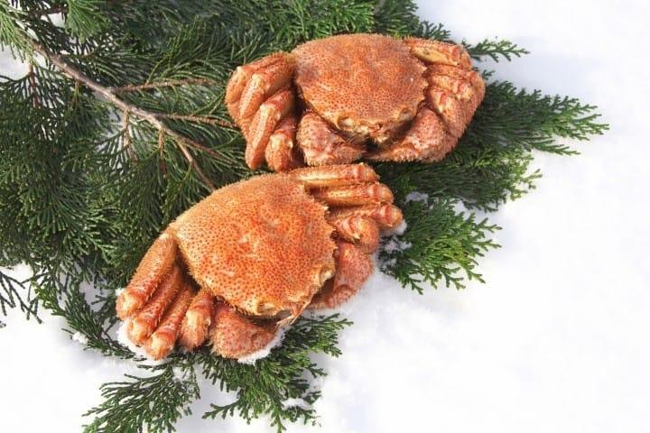 กุ้งหอยปูปลา อาหารทะเลสดๆ ยกมาให้ที่ตลาดซัปโปโรโจไก (Sapporo Jogai Market) ในฮอกไกโด (Hokkaido)