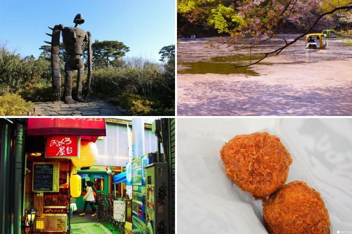 10项体验畅游东京・吉祥寺——井之头公园、吉卜力美术馆、居酒屋与杂货店