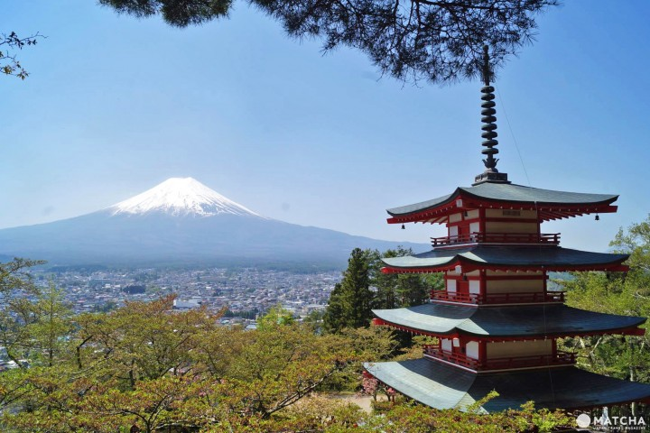 Mt. Fuji, Cherry Blossoms, And A Pagoda - Discover This Iconic Image In Japan!