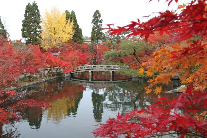 11 แหล่งชมใบไม้เปลี่ยนสีในเกียวโต 2018 (Kyoto)