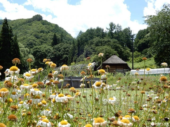 Minamiaizu - The Beauty And Serenity Of A Secluded Farming Village