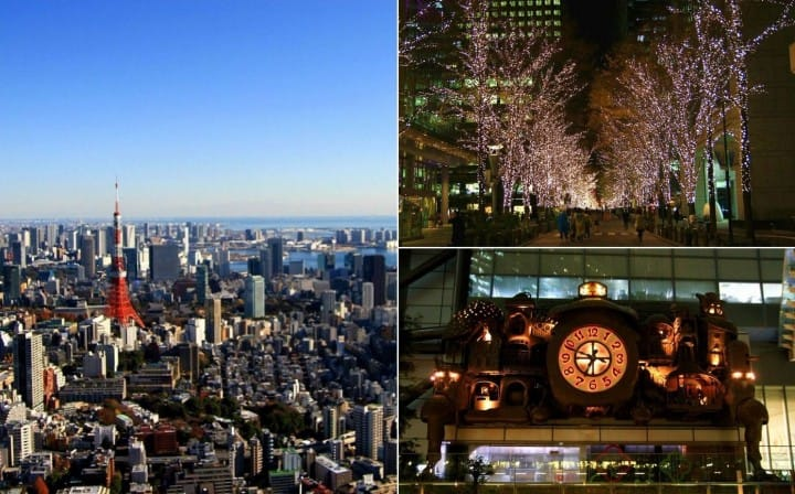Tour Tokyo's Brilliant Winter Spots With The Convenient Toei One-Day Pass