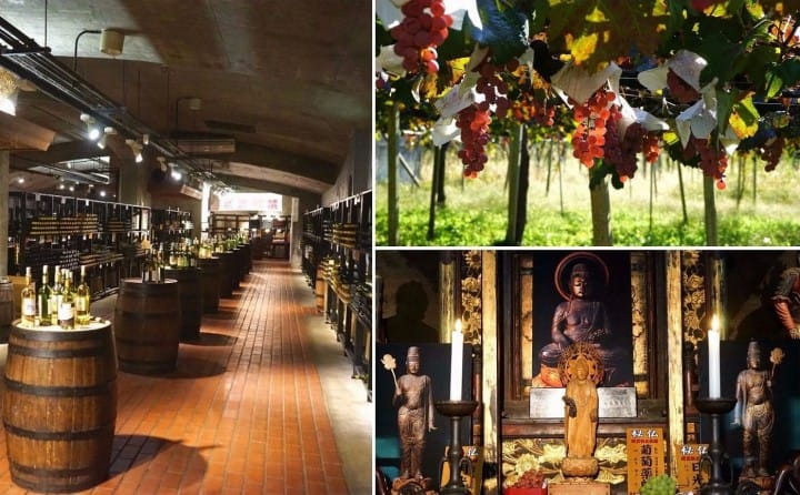Discover Japan's Wine Culture In Koshu - With The JR TOKYO Wide Pass