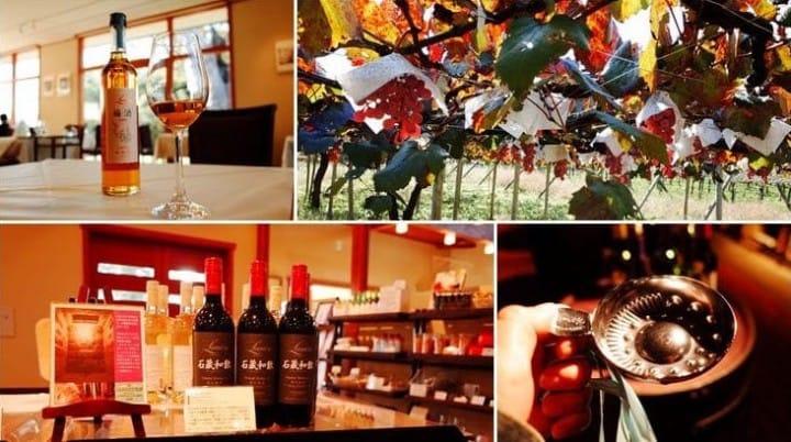 葡萄美酒夜光杯,日本的葡萄之鄉「山梨」一日紅酒滿喫之旅!