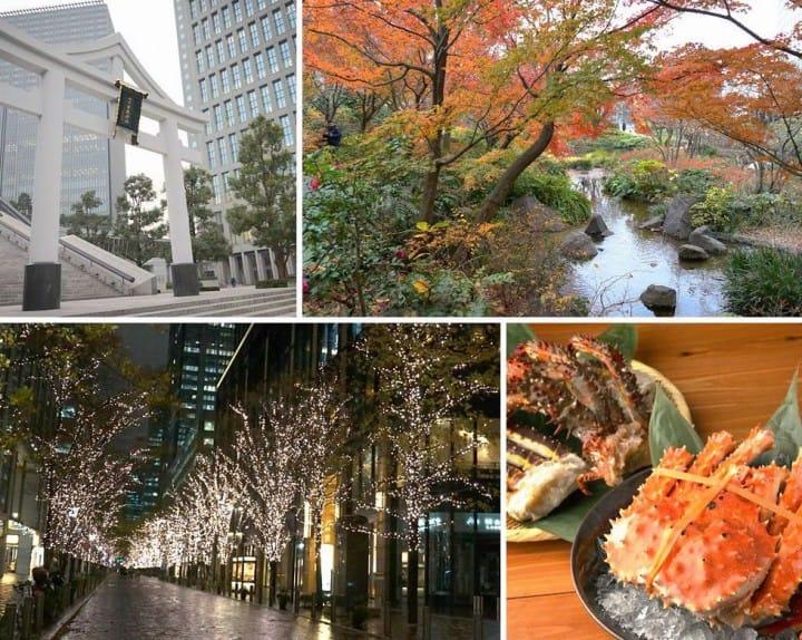 สัมผัสอีกด้านของโตเกียว แผนเที่ยวโดยรถบัสในหนึ่งวัน จากชิบูย่าไปจนชมไฟประดับสถานีโตเกียว
