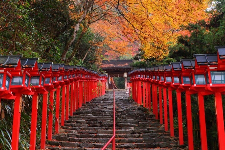 japan autumn leaves calendar 2018 seasonal forecast and famous spots