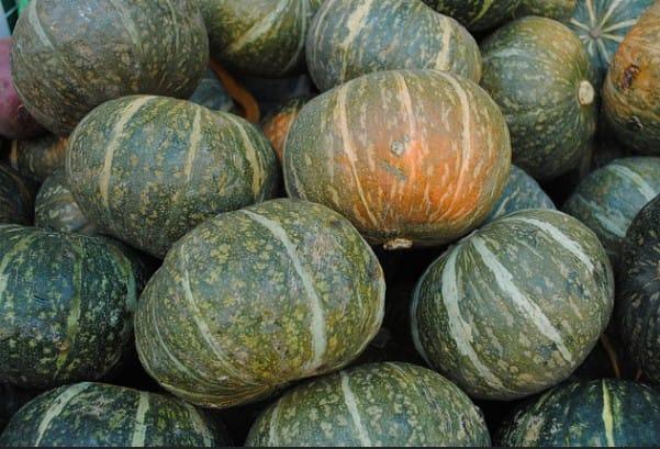 Top Seasonal Foods to Savour this Autumn