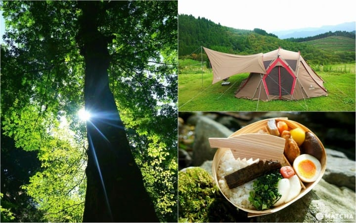 Outdoor Activities In Hita - Enjoy Japan's Nature To The Fullest!