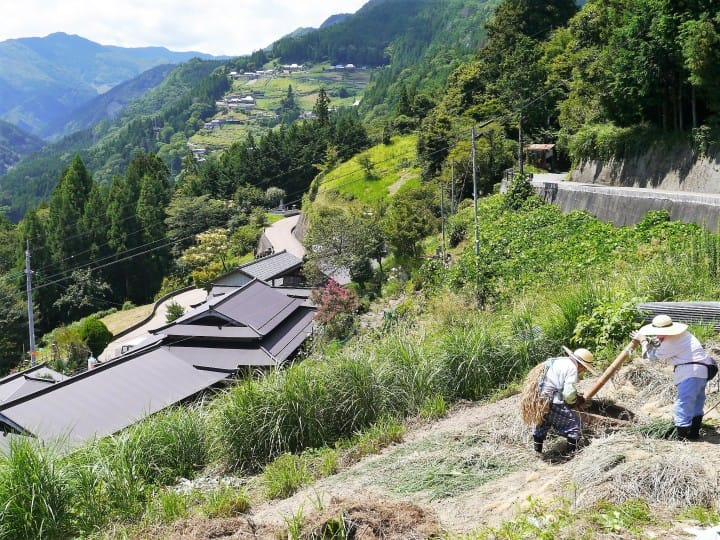 Nishi-Awa, Tokushima - 400-Year-Long Local Lifestyles And Traditions