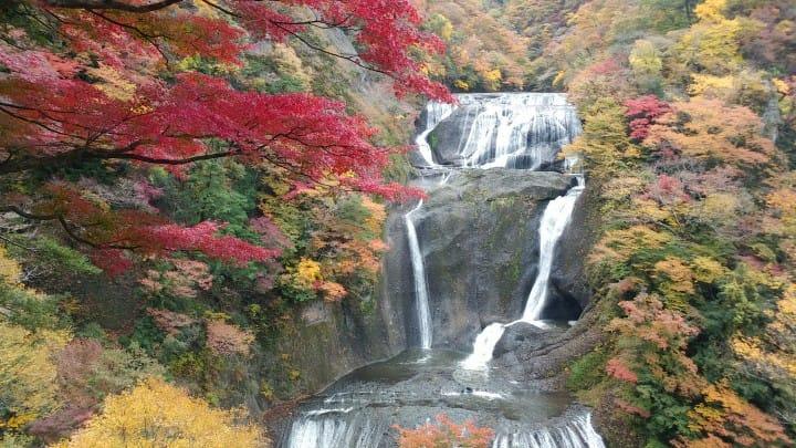 【茨城】利用「JR東京廣域周遊券」,探訪絕美楓葉山谷與瀑布,拜見水戶黃門