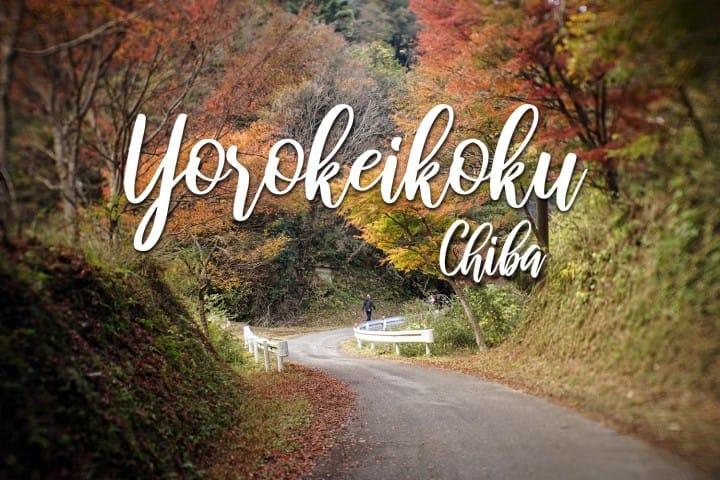 นั่งรถไฟท้องถิ่นสไตล์เรโทร ชมใบไม้เปลี่ยนสีที่หุบเขา โยโรเคโคคุ ชิบะ (Yoro-keikoku Ravine, Chiba)