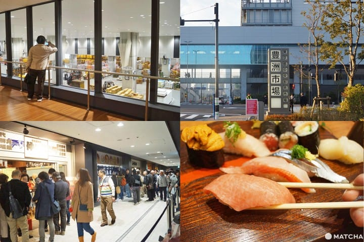 Toyosu Market Guide - Fish, Popular Shops, And Things To Know!