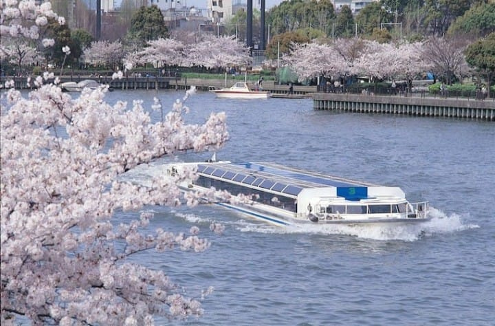 10 Great Cherry Blossom Viewing Spots In Kansai: Kyoto, Osaka, Nara, Hiroshima