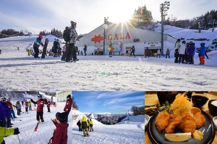 เรียนสกี เล่นหิมะแบบไปเช้าเย็นกลับจากโตเกียวที่กาล่า ยูซาว่า (GALA Yuzawa)