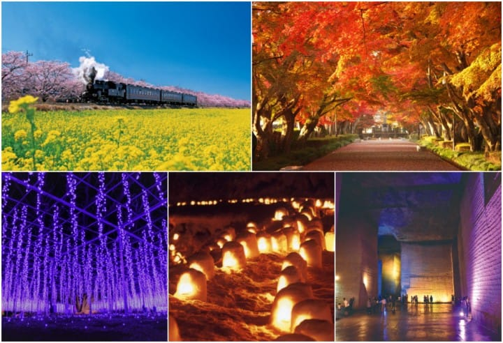 【도치기】 사계절 언제나 즐겁다! 사진을 좋아하는 분이라면 놓칠 수 없는 절경지 5선