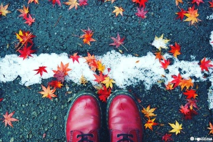 5 Actividades en interiores para disfrutar Japón en invierno