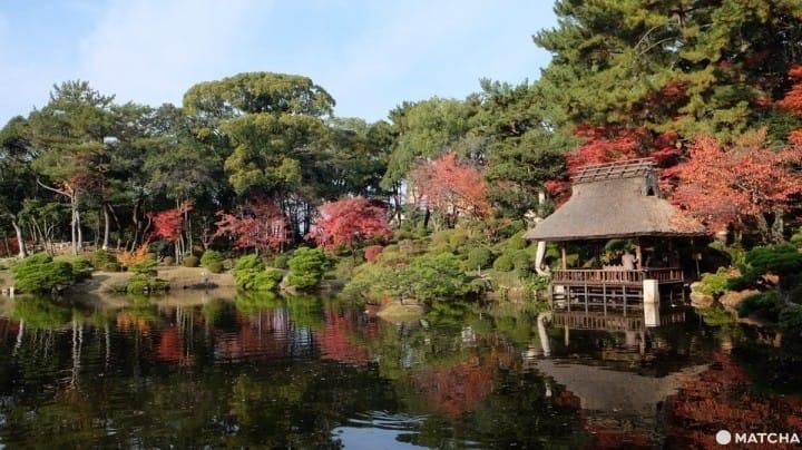 【廣島】日本歷史公園百選「縮景園」四季皆美日式庭園景點