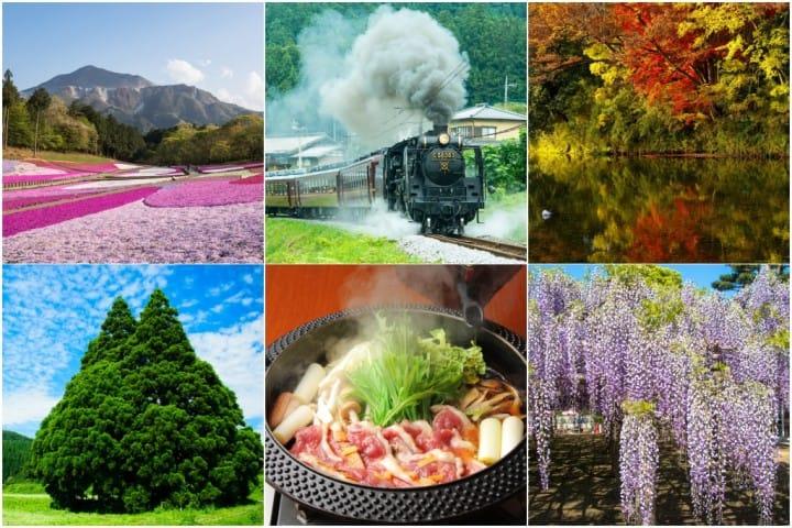 埼玉县旅游全攻略!交通方法、气候、美食与购物情报,还有推荐景点!