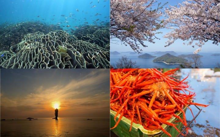 """想要寻觅日本岛国的自然美景,想要面朝大海高呼青春,""""国立公园""""在这里等着你。"""