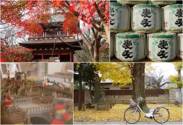 【千葉・茨城】騎上腳踏車追楓去!佐原與潮來,水鄉的秋季優雅楓情