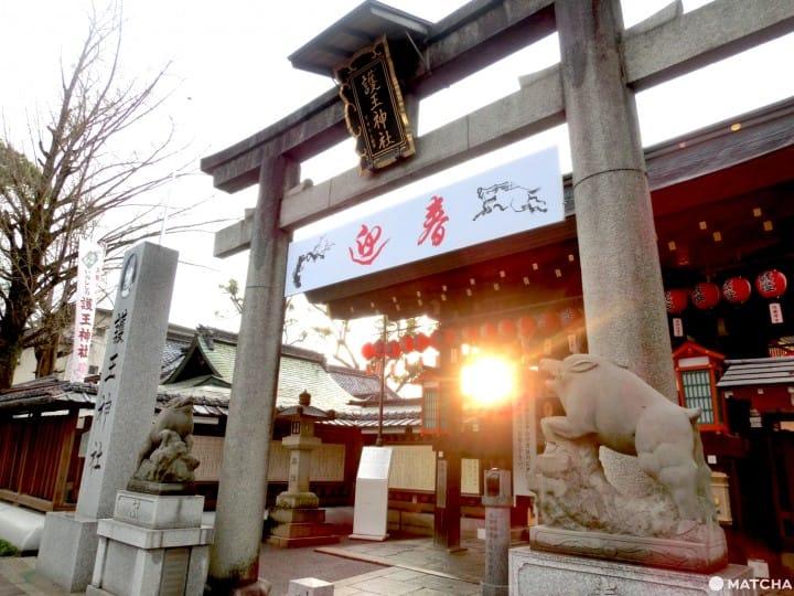【京都】可愛動物出沒注意!動物看家的京都神社5選