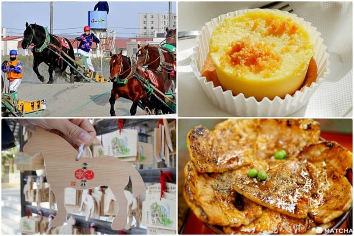 Obihiro - A Sweets Tour, Local Cuisine, And Banei Tokachi Horse Races