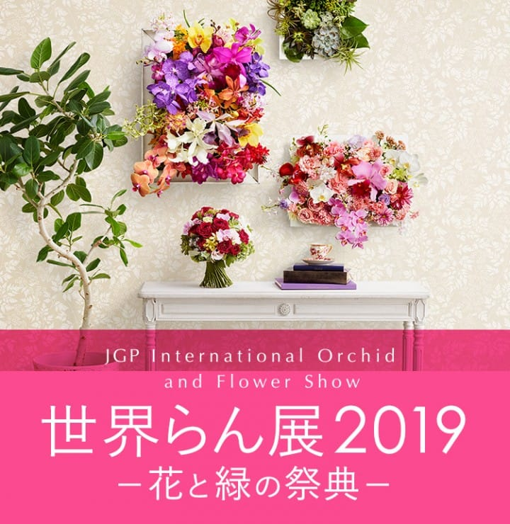 Spring At Tokyo Dome! JGP International Orchid And Flower Show 2019