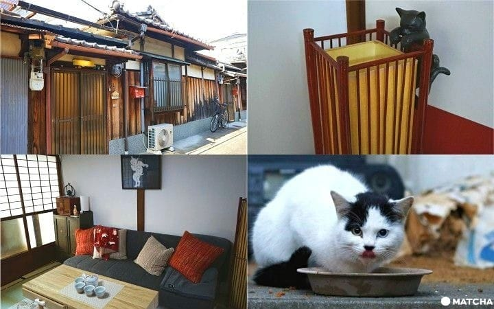 Maneki Machiya In Kyoto - Stay At A Historical House And Support Cats