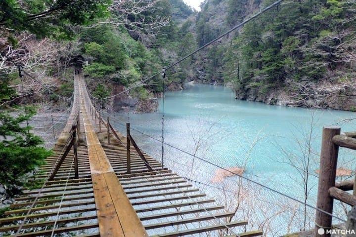 グリーンの湖上をお散歩!静岡の絶景スポット「夢の吊橋」