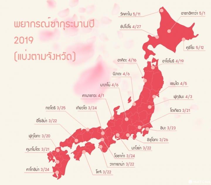 ดอกซากุระ บานเมื่อไหร่ ญุี่ปุ่น