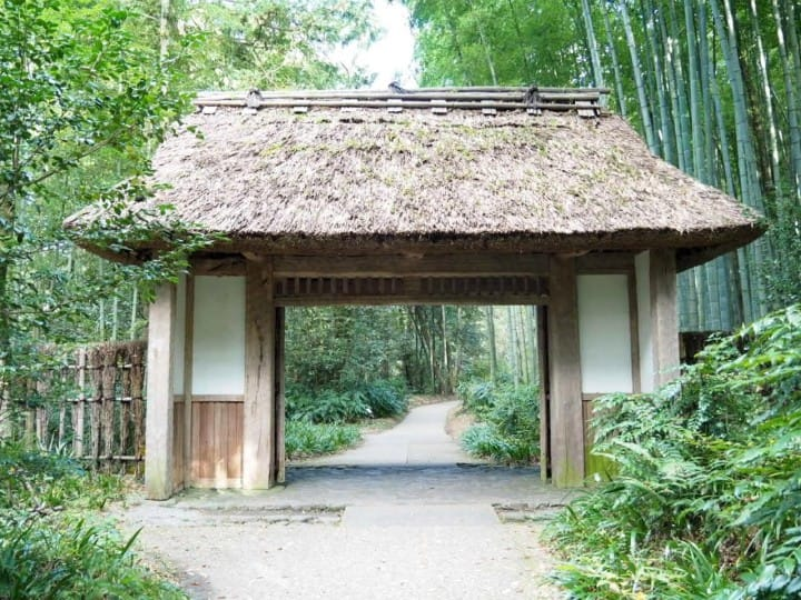 Cafés, Bamboo Forests, And Shopping In Hakone - A Relaxing Itinerary